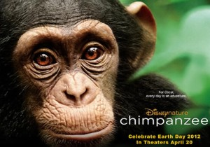 ChimpanzeeDisney