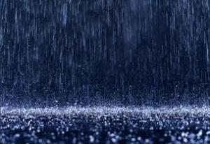 Rain23 304